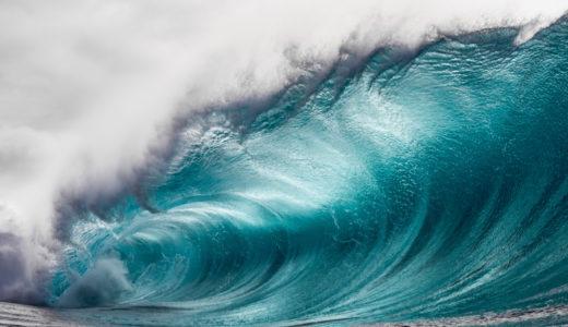 フォーカリア属の荒波とは?