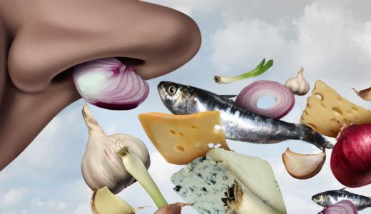 においが特徴的な6つの多肉植物